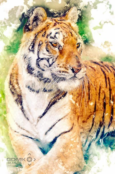Digitial art picture of a resting Tiger