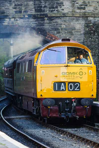 Class 52 western diesel loco D1015 arriving at Arley station on the Severn Valley Railway