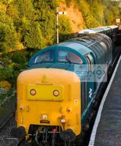 Class 55 Deltic 55019 at Bewdley Railway station on the Severn Valley Railway