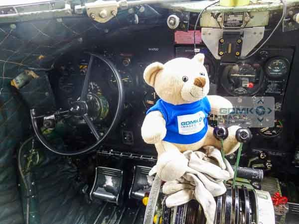 GDMK Images lucky mascot #Ted before his airshow display ride on C47 Dakota N147DC at the American Airshow 2016