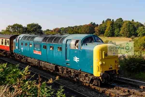 Class 55 Deltic 55019 arriving at Arley station on the Severn Valley Railway