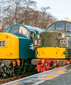 Class 40 locos D345 (40145) and D335 (40135) at Rawtenstall railway station during the East Lancs Railway English Electric theme day on 11th January 2014
