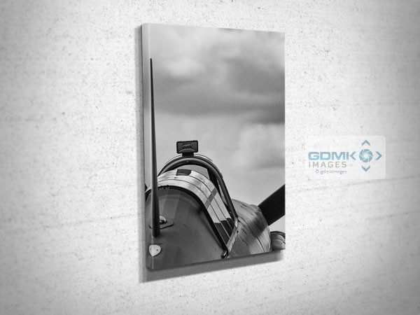 Black and White Hurricane Rear View Canvas Art Print