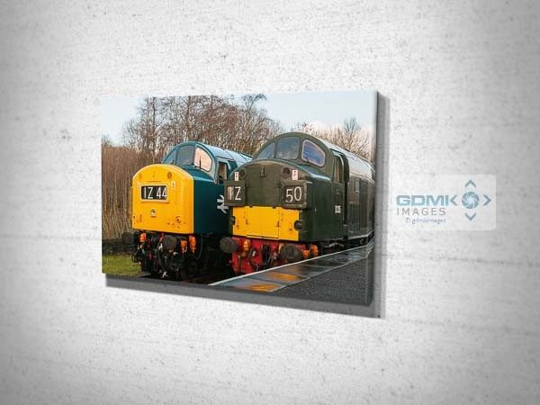 Class 40s D345 and D335 Canvas Print