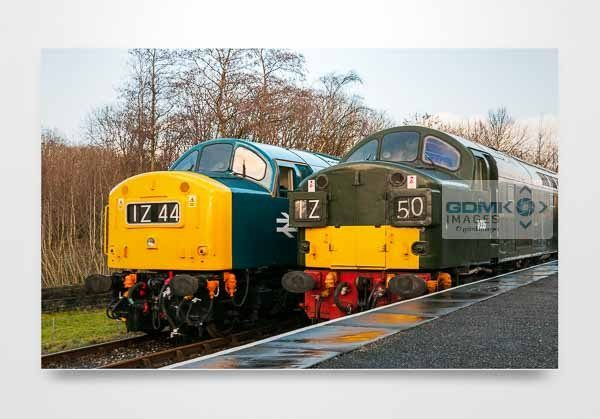 Class 40s D345 and D335 Wall Art Print