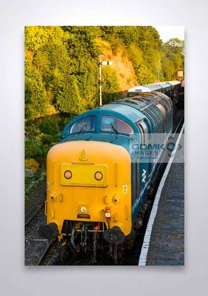 Class 55 55019 Evening Light Front View Wall Art Print