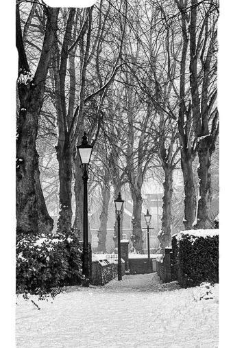 Black and White Winter Scene Mobile Phone Case
