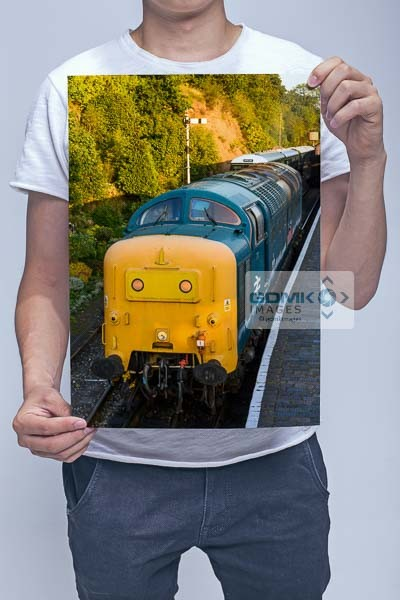 Man Holding Class 55 55019 Evening Light Front View Wall Art Print