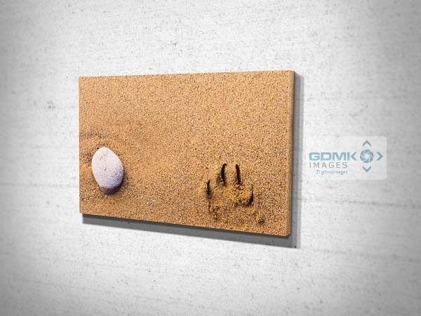 Stone and Pawprint Canvas Print