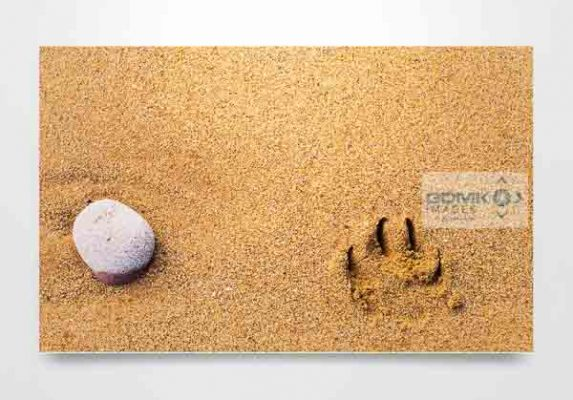Stone and Pawprint Wall Art Print
