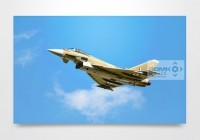 WW2 Camouflage Typhoon Wall Art Print