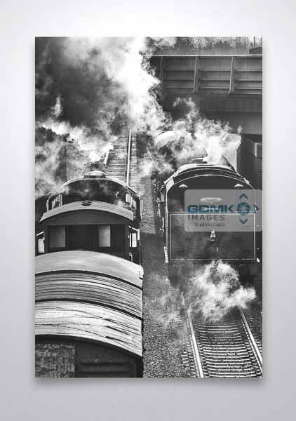 Black and White Steam Trains Passing Wall Art Print