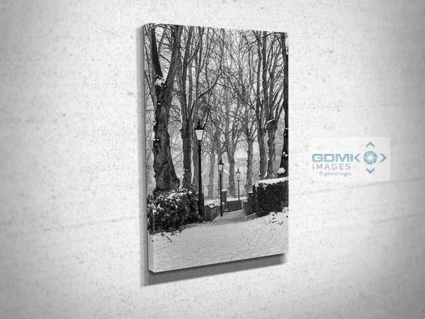 Black and White Winter Scene Canvas Print