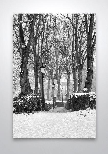 Black and White Winter Scene Wall Art Print