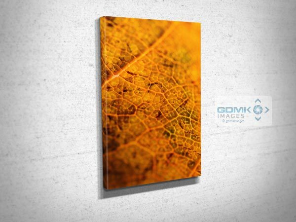 Brown Leaf Textures Canvas Print