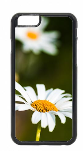 Oxeye Daisy Flower Mobile Phone Case