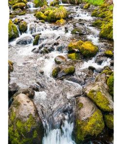 Rocky Stream in Snowdonia Mobile Phone Case