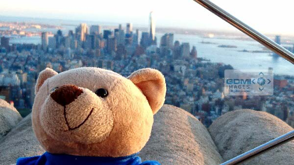 The Empire State Building is very tall especially to a small bear
