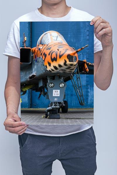 Man Holding RAF Jaguar XX119 Wall Art Print