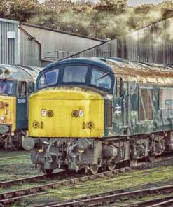 45041 and 50008