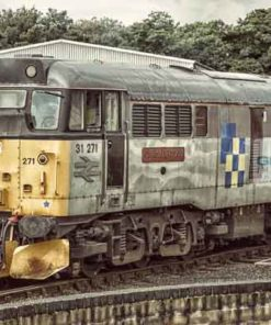 Class 31 31271