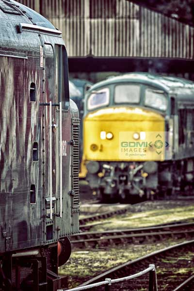 Class 46 and 45041