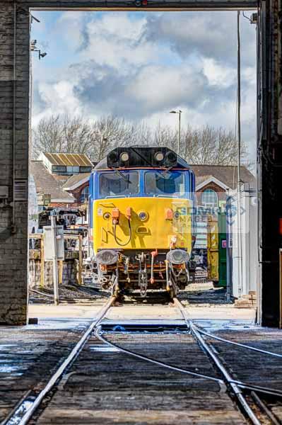 Class 50 50026