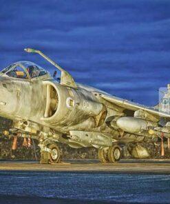 Royal Air Force Sea Harrier at dusk