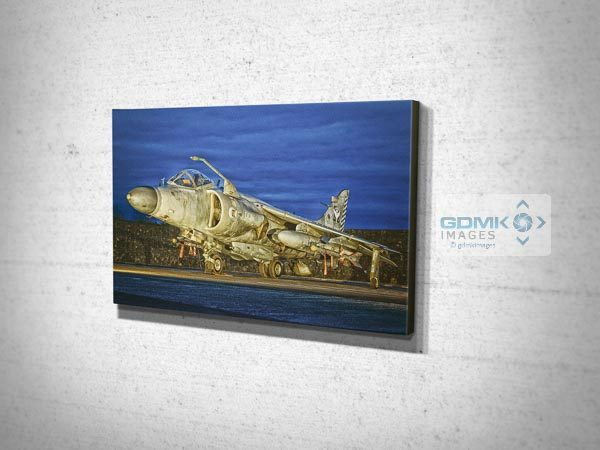 Sea Harrier at Dusk Canvas Print