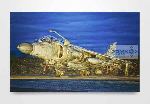Sea Harrier at Dusk Wall Art Print
