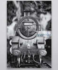 Black and White 80136 at Pickering Wall Art Print