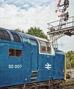 55007 Pinza under semaphore signals
