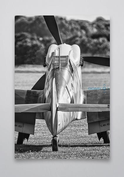 B&W BF109 Buchon Rear View Wall Art Print