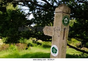 closeup-of-a-way-marker-on-the-heart-of-england-way-on-cannock-chase-BC5AJY